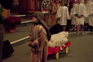 bringing-home-the-sheep